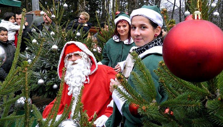 Božićna čarolija u Djedovoj kolibi u Hrvatskoj Kostajnici