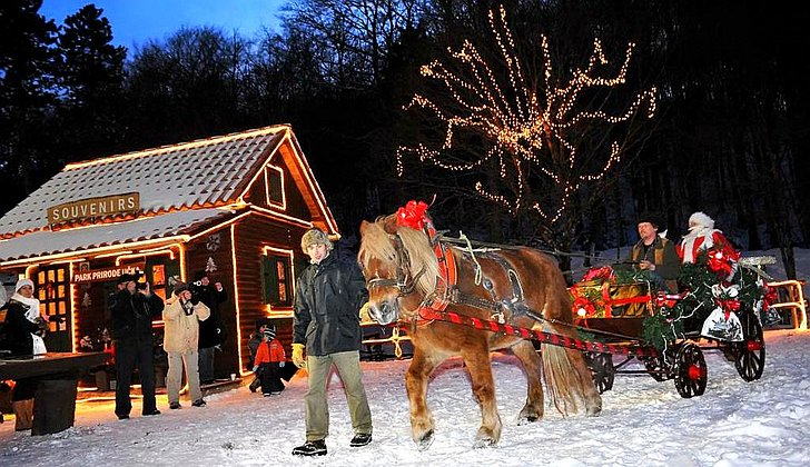 Božićna bajka u Parku prirode Učka; © TZ Opatija