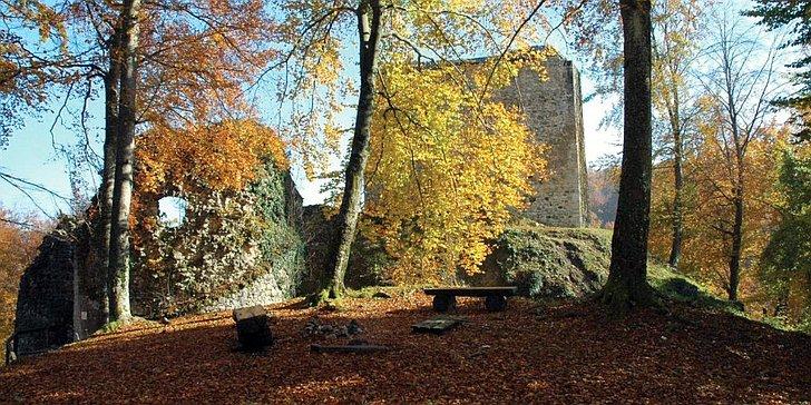 Zelingrad © www.tz-zelina.hr