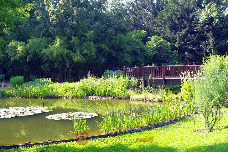 Botanički vrt u Zagrebu - Mostići (2)  Galerije slika na Putovnica.net