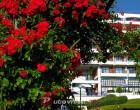 Smještaj u Ohridu