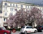Smještaj u Salzburgu