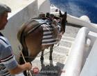 Korisne informacije o Santoriniju