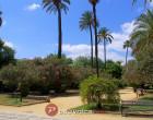 Klima i vrijeme u Sevilli