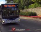 Javni prijevoz u Sintri