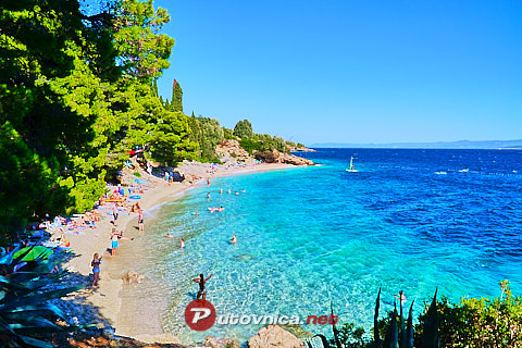 Murvica (Bol) (Brač): beaches and coves
