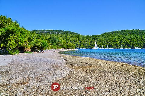 Polače (Mljet): beaches and coves