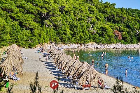 Saplunara (Mljet): beaches and coves