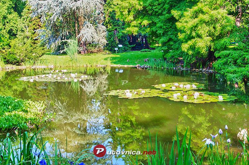 Botanicki Vrt U Zagrebu Jezero 102355 Slike Na Putovnica Net