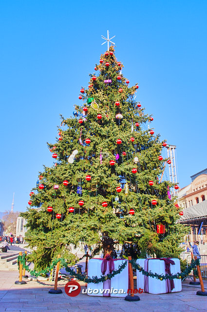 Pečuh - Božićno drvce (#109975)  Slike na Putovnica.net